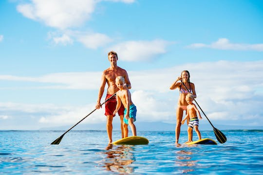 Stand Up paddle wildlife tour and beach 4x4 Noosa day trip