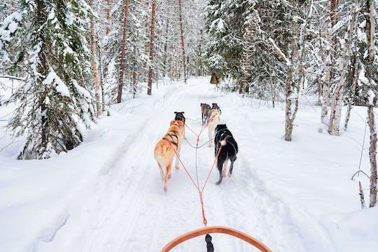 Семейный тур - Зимние достопримечательности Леви на снегоходе