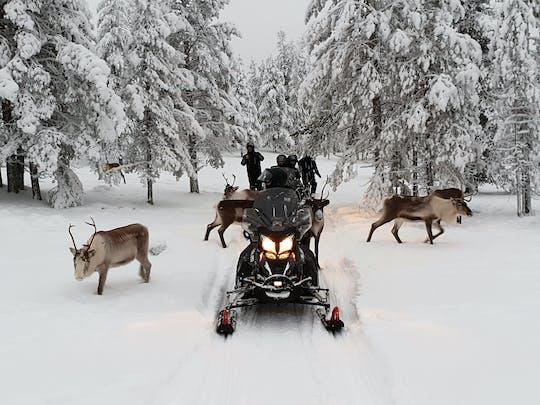 Elektryczne skutery śnieżne w Levi