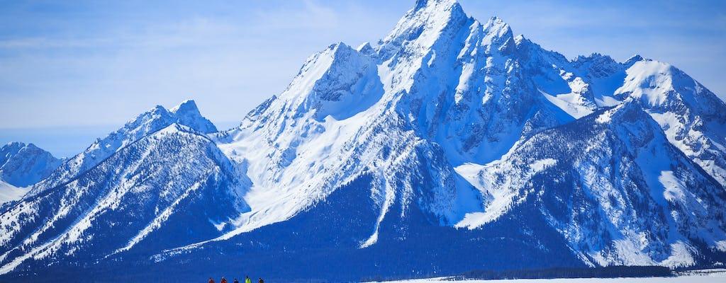 Avventura privata con le racchette da neve di mezza giornata nel parco nazionale del Grand Teton