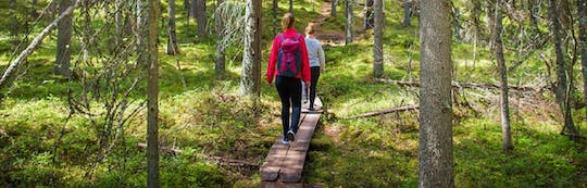 The Finnish heritage guided tour at Seitseminen National Park