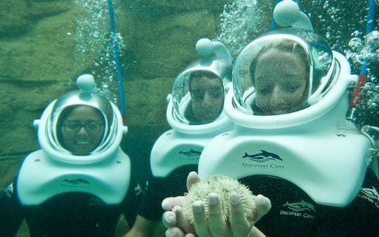 SeaVenture at Discovery Cove 2023