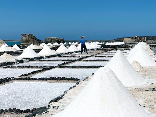 Salinas de Janubio Salt Flats Ticket