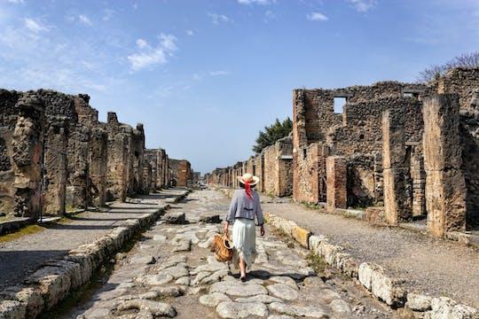 Biglietto salta fila per gli Scavi di Pompei e audioguida