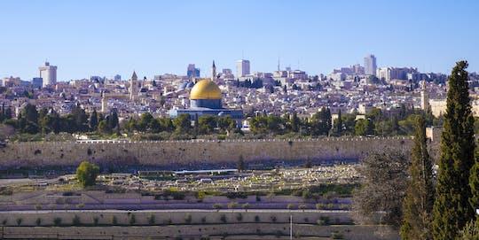 Full-day David and underground Jerusalem tour from Netanya