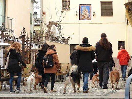Visita guiada al Realejo con perro