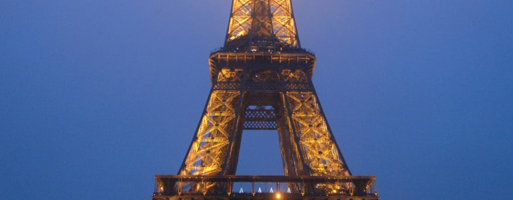 Paris By Night Tour With Eiffel Tower And Seine Cruise Musement