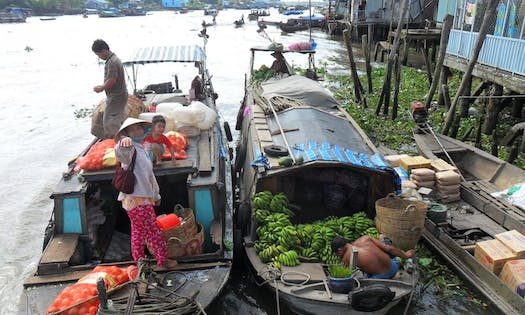 climate change in vietnam The vietnamese mekong delta is one of earth's most agriculturally productive regions and is of global importance for its exports of rice, shrimp and fruit the 18 million inhabitants of this low-lying river delta are also some of the world's most vulnerable to climate change.