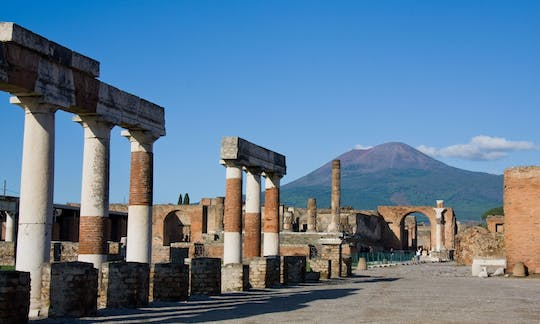 Pompeii tour with round trip transfer from Rome