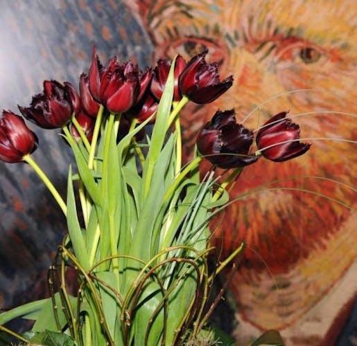 Tulip Vincent.jpg