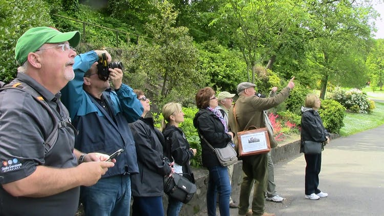 Group tours - Stuart Usher with fascinated clients at Princess Street Gardens.jpg